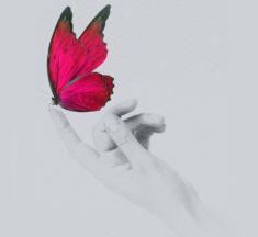 25.11.2019 Giornata Internazionale Contro la Violenza Sulle Donne